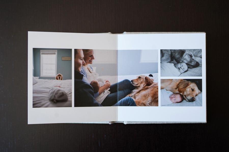 blog align album design wedding album design for professional